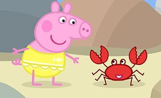 Peppa Pig S02E10 Rock Pools