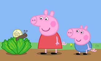 Peppa Pig S02E21 Tiny Creatures