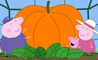 Peppa Pig S05E05 Pumpkin Competition