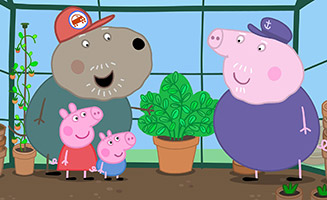 Peppa Pig S05E12 Grandpa Pigs Greenhouse