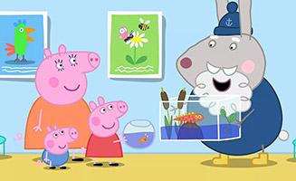 Peppa Pig S06E35 Doctor Hamsters Big Present