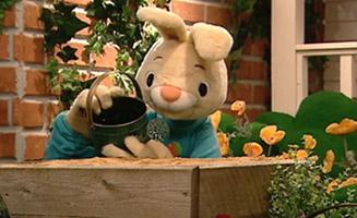 Harry The Bunny E13