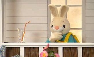 Harry The Bunny E31