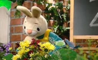 Harry The Bunny E32