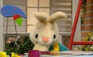 Harry The Bunny E26