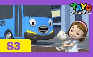 Tayo the Little Bus S03E19 I want a puppy