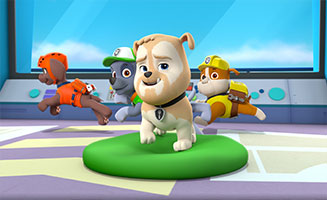 PAW Patrol S02E14 Pups Save and Elephant Family