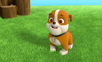 PAW Patrol S02E26 Pups Bark with Dinosaurs